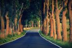 my road.. by PKphotos