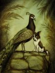Of Dogs and Peafowls by Culpeo-Fox