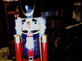 Nutcracker came over to visit by loadedwatergun