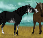 Breeding Morf x Temperance by alexpeanut