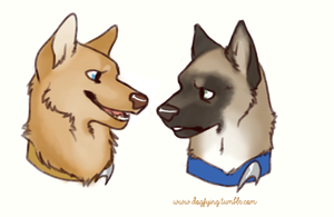 Kirk and Bones by FourDirtyPaws
