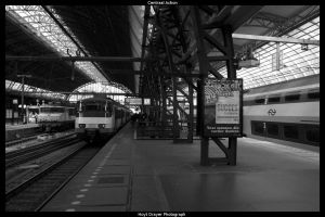 Centraal Action by HerrDrayer