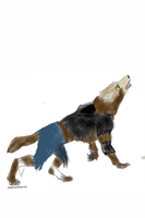 Colored Werewolf Lineart 2 by V8Arwing67