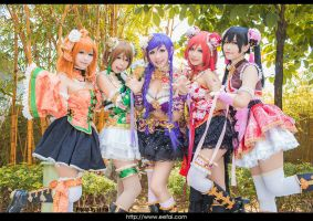 LoveLive Cosplay 07 by eefai