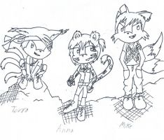 Sonic OCs: Anna, Terra and Mike by Tigrezz55