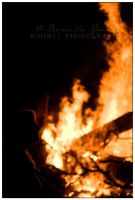 Cityfolk, check out our fires by Doubtful-Della