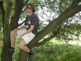 sitting on a tree by hermiona1988-stock
