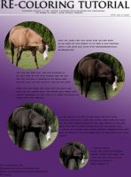 Re-colouring Horse Tutorial. by EquineGirl-Stock