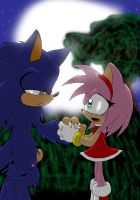 Meh First SonAmy pic by Fly-Sky-High