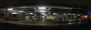 Vauxhall Station by hexdcml