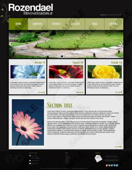 Website Design #1 by DrayGFX