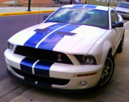 07' Shelby GT500 by Mister-Lou