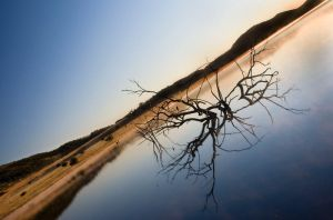 Pilanesberg Sunrise II by Danie-07