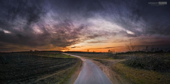 The road to the good times by NorbertKocsis