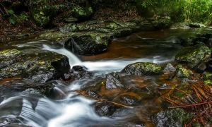 Cedar Creek by MarkLucey