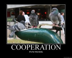 Demotivator - Cooperation by Freyad-Dryden
