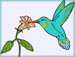 Magic hummingbird for CecilyAndreuArtwork by Erozja