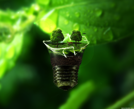 Green Bulb by NikolaZahariev