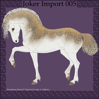 Joker Import 005 by BaliroAdmin