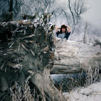 arbitrary. by Portrait-of-Light