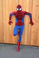 Spider-Man Cosplay (1) by masimage