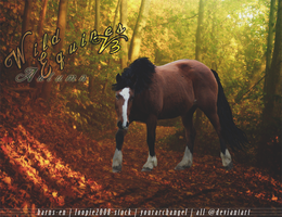 BANNER: Wild Equines Fall by YourArchAngel