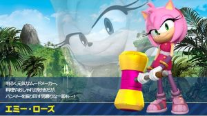 Amy Rose Profile (Japanese) by OptimusPrimeTFR