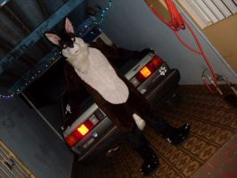 My car, lets drive? by jlfurry