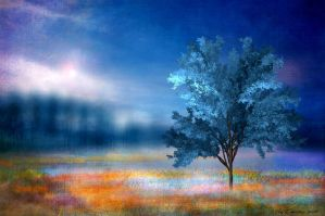 Tree Dream by JacqChristiaan