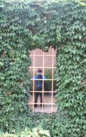 Window Through the Green 2 by Windthin