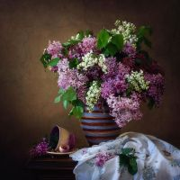 Multicolored lilacs by Daykiney