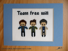 Team Free Will cross stitch by caycowa