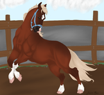 Look Live Miss Moxie by AgentDarkhorse