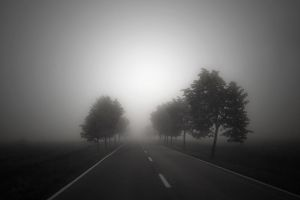 on the road by MaraDamian