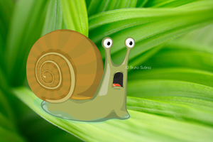 Astonished Snail by bruno354