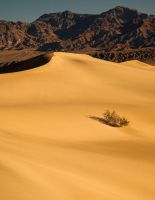 Death Valley , by Brettc
