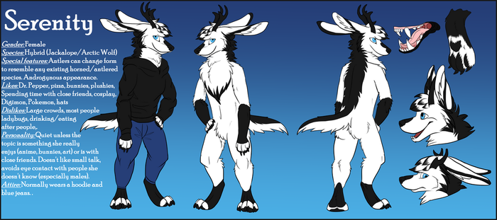Serenity Reference Sheet 2017 by wolfie115