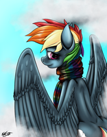Rainbow Dash by fastballncs