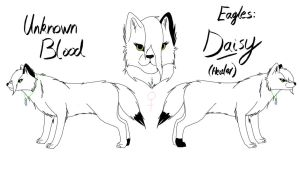 Unknown Blood - Daisy Reference by fluffylovey