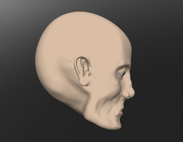 the head sculptris raw image 4 by Technohippy
