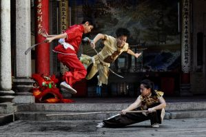 Young Generation Wushu -6 by DawnRoseCreation
