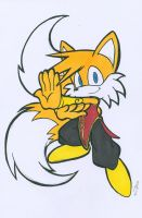 STREET FIGHTER TAILS by WhiteFox89
