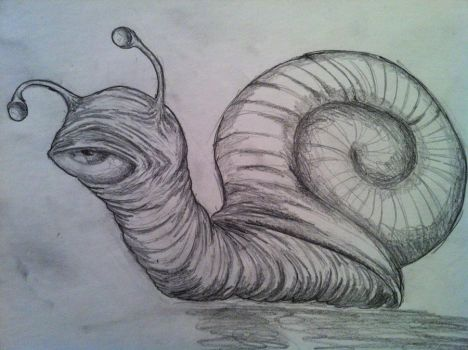 Snail by Mawcos
