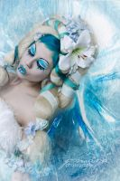 Iced.Beauty by Ophelia-Overdose