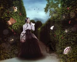 Enchanted Garden by LadyProvidence