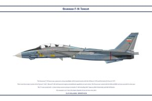 F-14A Iran 4 by WS-Clave