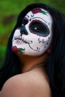Day of the dead valentine 06 by DR0ck