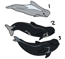 Short Finned Pilot Whales Adopt Lot 1-1/3OPEN by corkyiiadoptables