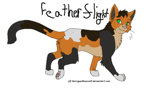Featherflight - ThunderClan OC by IceHeartTheWarrior