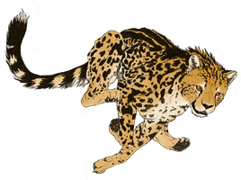 King Cheetah in flight by Veggie-Raptor